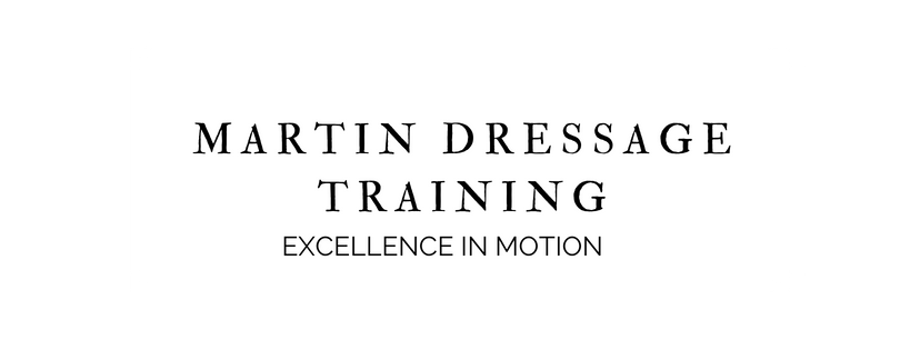 Martin Dressage Training